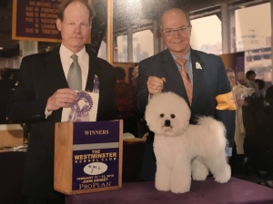 Whitebred's Pop the Cork for charmed at 2019 Westministe Dog Show