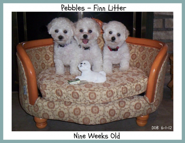 Pebbles and Finn
