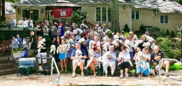 Annual Bichon Party 2017