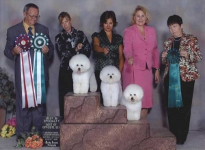 The Big family affair at the CANADIAN BICHON FRISE SPECIALTY !